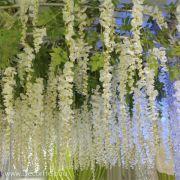 глициния белая, искусственные цветы для свадебного декора